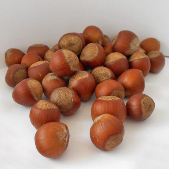 """<a href=""""http://legumefructeoradea.ro/produs/alune/"""">Alune</a>"""