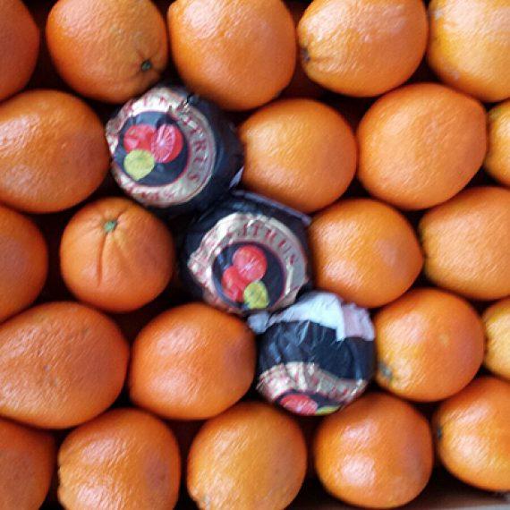 """<a href=""""http://legumefructeoradea.ro/produs/portocale/"""">Portocale</a>"""