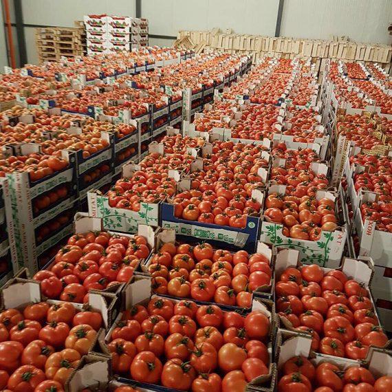 "<a href=""https://legumefructeoradea.ro/produs/rosii/"">Rosii</a>"